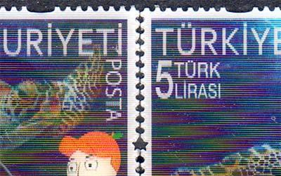 Turkey3d2_2