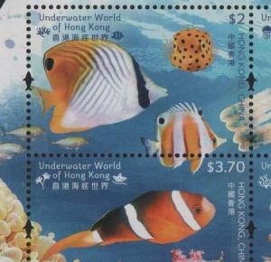 Fishhong2